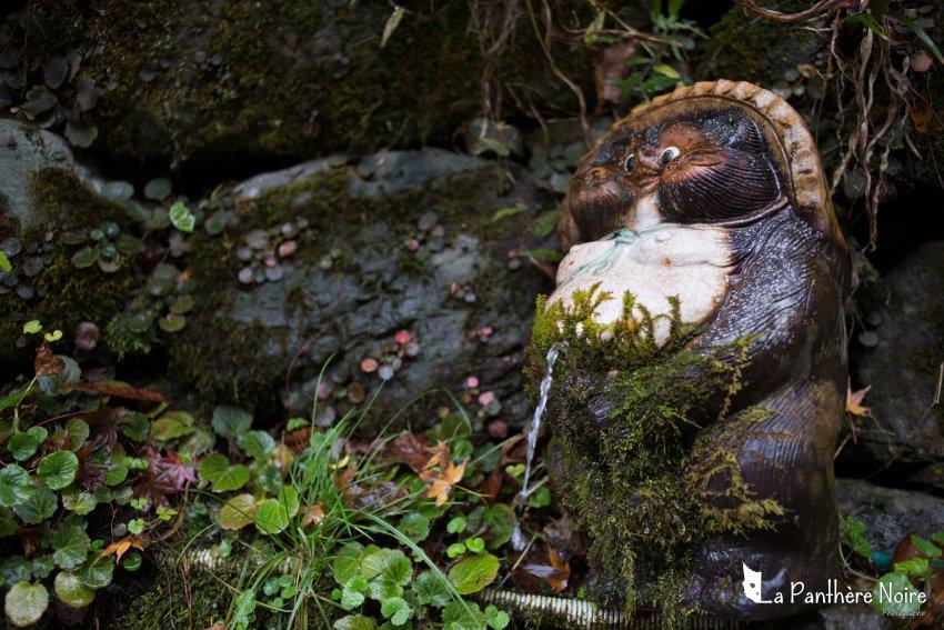 japon la panthere noire photographe