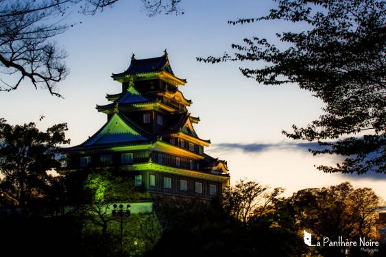 UN RÊVE DORÉ : CAPTURER LES SAISONS AU JAPON